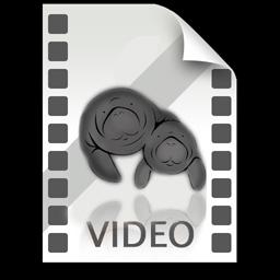 videoiconManati