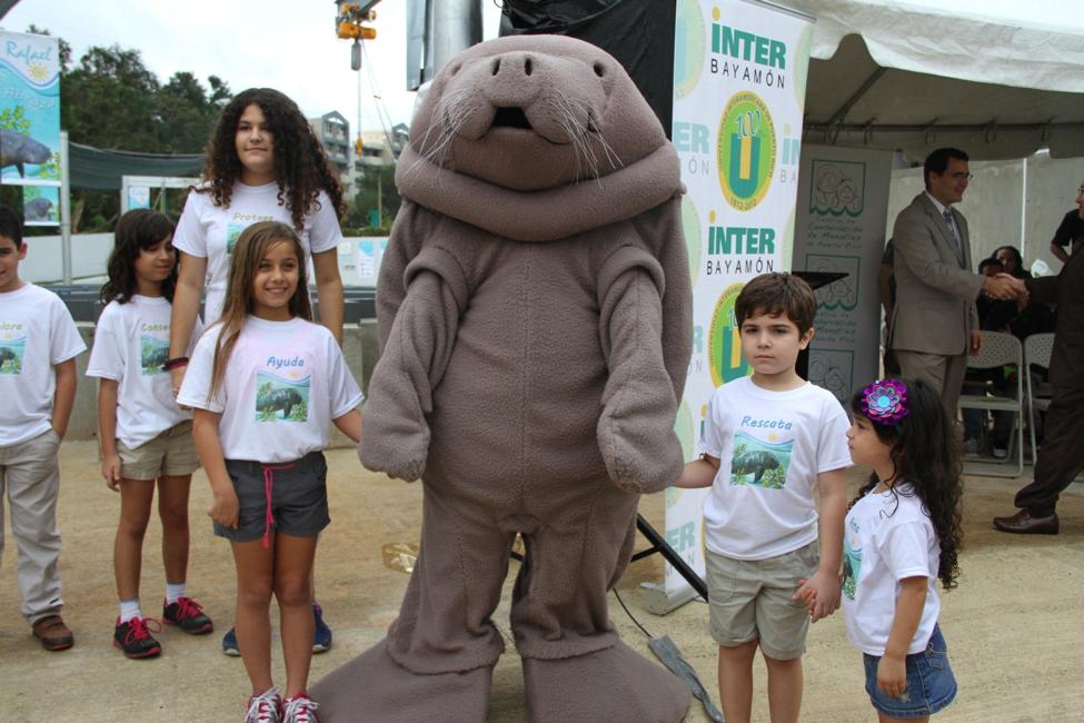 Los niños no le soltaban la mano a la mascota representativa del manatí, momentos después del corte de cinta de las nuevas instalaciones que albergarán este mamífero en el Recinto de Bayamón de la Universidad Interamericana de Puerto Rico.